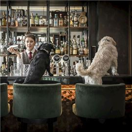 Dog-friendly Bar in Mayfair - treat your pup to one of our 'Dogtails' at Smith & Whistle
